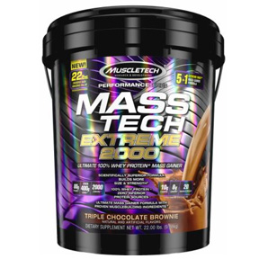 Mass Tech Bucket - 22 lbs